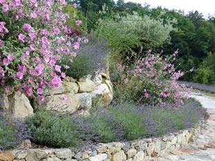 Progettazione giardini milano - Progetti giardino per villette ...
